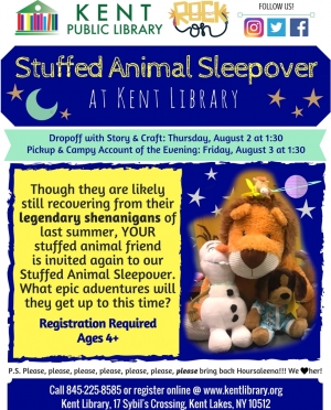 Stuffed Animal Sleepover Flyer